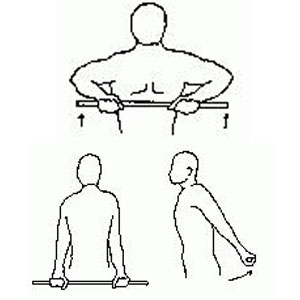 A cartoon of various deltoid exercises, first lifting a bar with both hands straight up to chest level, then holding the bar behind the back with both hand at butt level, and lifting back and up