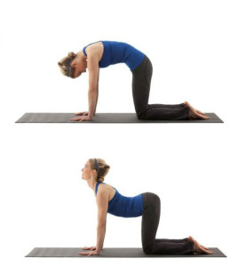 A two-part image of woman, first on her hands and knees with her back arched up and head down in cat pose, then with torso pulled down and head up in cow pose